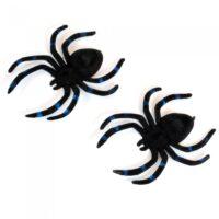 araña mediana con patas largas